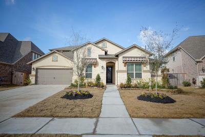 Katy Single Family Home For Sale: 27610 Fleetwood Bend Lane