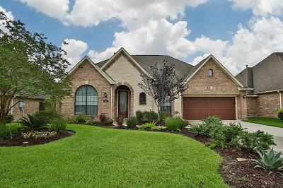 Shenandoah Single Family Home For Sale: 141 Silverwood Ranch Drive