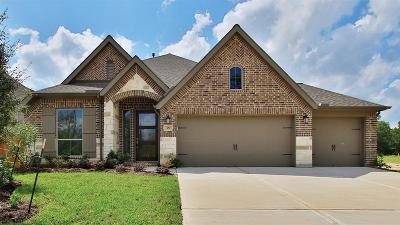 Conroe Single Family Home For Sale: 329 Torrey Bloom Loop