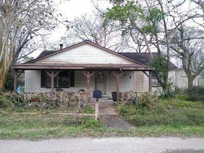Brazoria Single Family Home For Sale: 438 E Florida Street