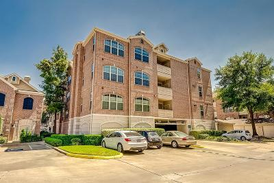 Houston Condo/Townhouse For Sale: 2111 Welch #B209