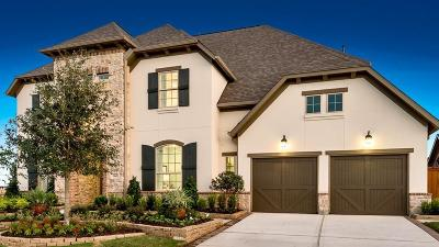 The Woodlands Single Family Home For Sale: 22 Mayapple Blossom Place