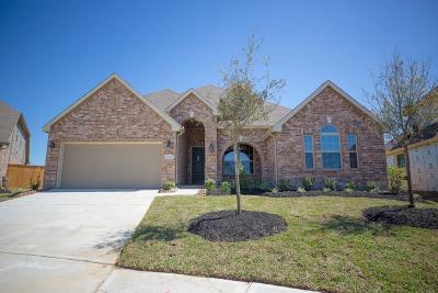 Cypress Single Family Home For Sale: 18526 Panton Terrace Lane