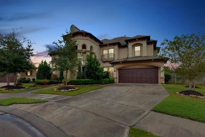 Katy Single Family Home For Sale: 3322 Mallard Run Court