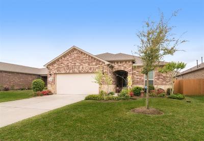League City Single Family Home For Sale: 658 Tenuta Lane