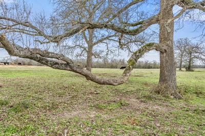 Grimes County Farm & Ranch For Sale: 0000 County Road 238