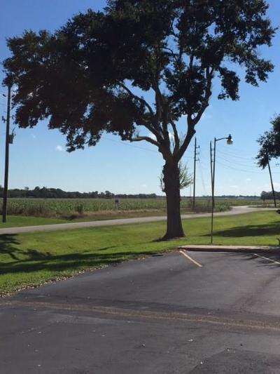 Austin County Farm & Ranch For Sale: Zaruba Road