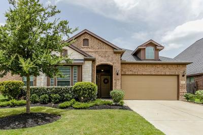 Sugar Land Single Family Home For Sale: 4523 Montcliff Bend Lane