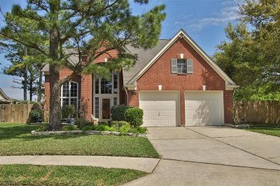 Houston Single Family Home For Sale: 7406 Pleasant Ridge Drive