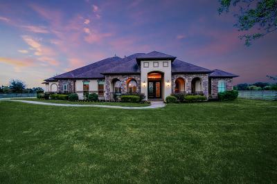 Magnolia Single Family Home For Sale: 443 Meadow Lake Drive