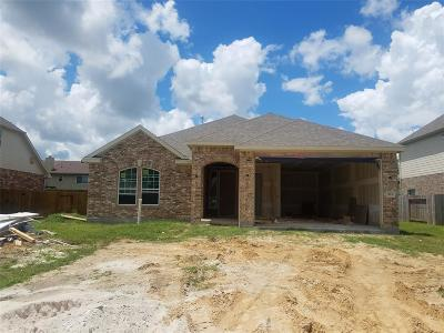 League City Single Family Home For Sale: 503 Rondel