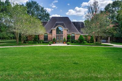 Houston Single Family Home For Sale: 17010 N Ivy Circle