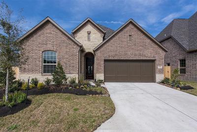 Houston Single Family Home For Sale: 13218 Parkway Meadows Drive