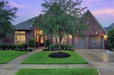 Shadow Creek Ranch Single Family Home For Sale: 13613 Starwreath Drive