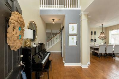 Sugar Land, Sugar Land East, Sugarland Single Family Home For Sale: 1355 Summer Terrace Drive