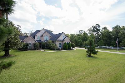 Magnolia Single Family Home For Sale: 32719 Tall Oaks Way