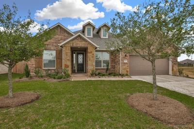 Manvel Single Family Home For Sale: 19327 Lake Ridge Drive