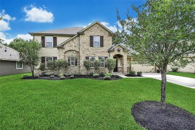 Tomball Single Family Home For Sale: 11219 Misty Willow Lane