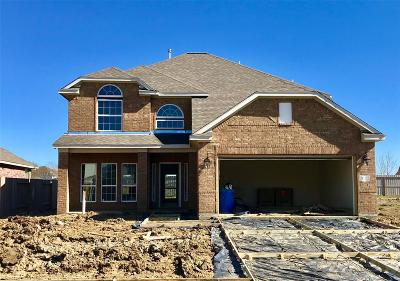 Baytown Single Family Home For Sale: 119 Brazos Drive