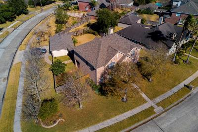 Friendswood Single Family Home For Sale: 1410 Eagle Lakes Drive