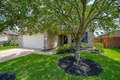 Pearland Single Family Home For Sale: 11404 Hidden Bay Drive