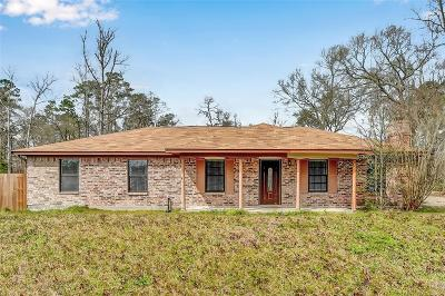 Conroe Single Family Home For Sale: 11887 Langtree Lane