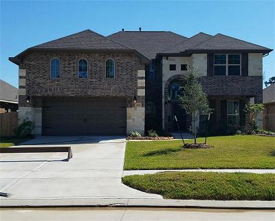 Tomball Single Family Home For Sale: 10311 Silver Shield Way