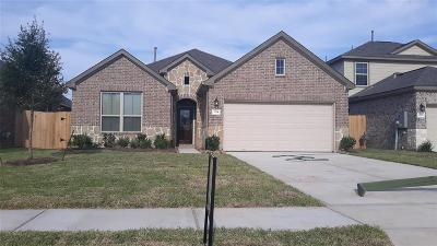 Texas City Single Family Home For Sale: 3214 Hatteras Drive