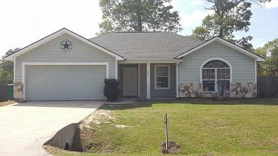 Conroe Single Family Home For Sale: 228 Kellyn Court