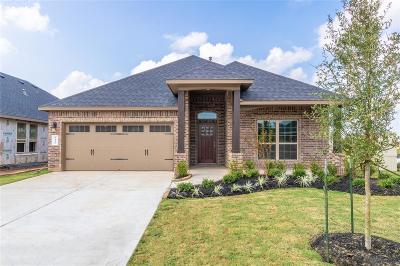 Rosenberg Single Family Home For Sale: 8606 Green Paseo Place