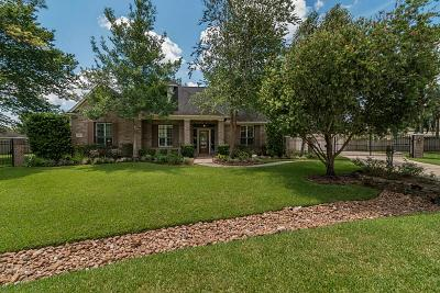 Friendswood Single Family Home For Sale: 1002 Acorn Court