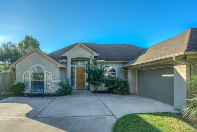 Willis Single Family Home For Sale: 7166 Edgewater Drive