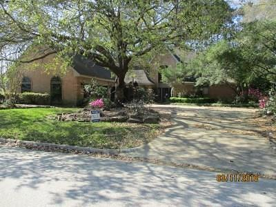 Houston Single Family Home For Sale: 4615 Breezy Point Drive