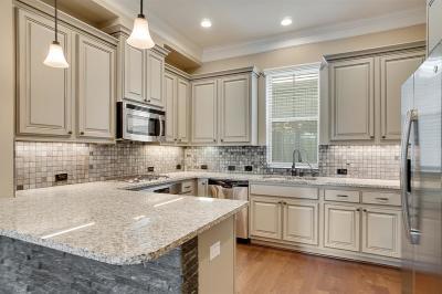 Houston Single Family Home For Sale: 1813 Drew Street