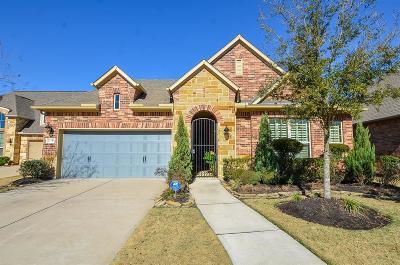 Katy Single Family Home For Sale: 27110 Camirillo Creek Lane