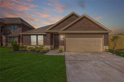 Missouri City Single Family Home For Sale: 2410 Volterra Lake Drive