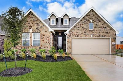 Alvin Single Family Home For Sale: 218 Ashley Way