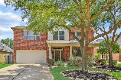 Houston Single Family Home For Sale: 17234 Rush Trace Court
