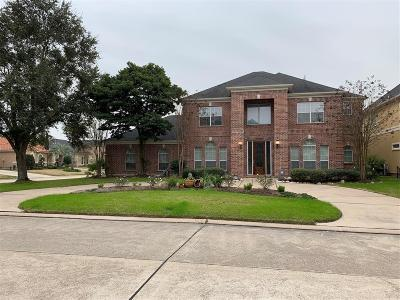Houston Single Family Home For Sale: 14203 Cloud Cliff Lane