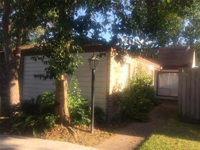 Houston Single Family Home For Sale: 12133 Poulson Drive