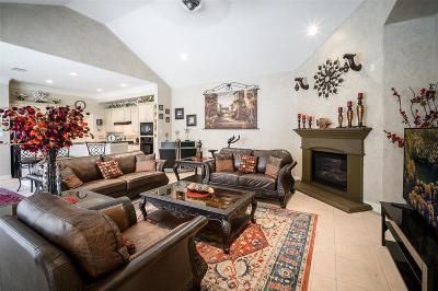 Houston Single Family Home For Sale: 14134 Hollowmill Lane