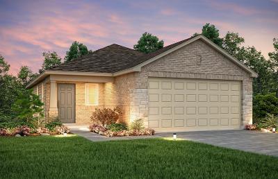 Houston Single Family Home For Sale: 14710 Sierra Garden Drive