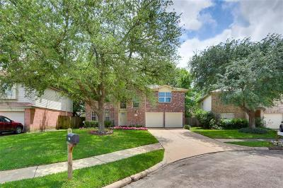 Channelview Single Family Home For Sale: 14910 Dunster Lane