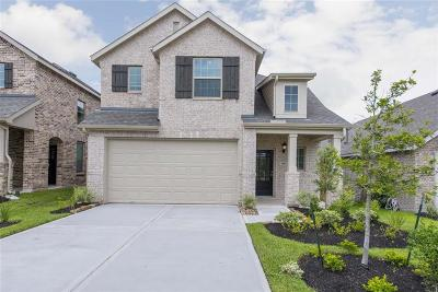Montgomery Single Family Home For Sale: 308 Tangle Birch