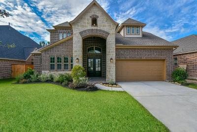 Montgomery Single Family Home For Sale: 133 Kit Fox Court