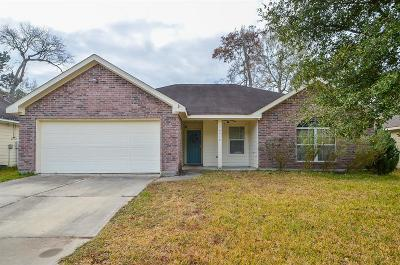 Conroe Single Family Home For Sale: 16416 Ryan Guinn Way