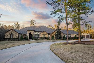 Montgomery Single Family Home For Sale: 6927 Comanche Bend