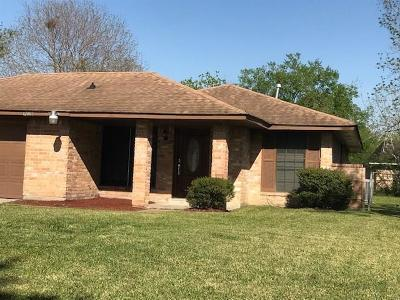 Houston Single Family Home For Sale: 12007 Binghampton Drive