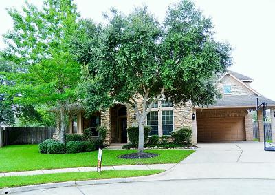 Katy Single Family Home For Sale: 23606 Rollinford Lane