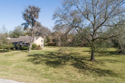 Houston Single Family Home For Sale: 1203 Briar Bayou Drive
